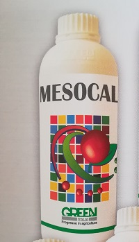 MESOCAL