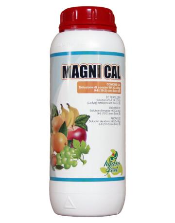Magni-Cal