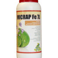 Micrap-Fe-7
