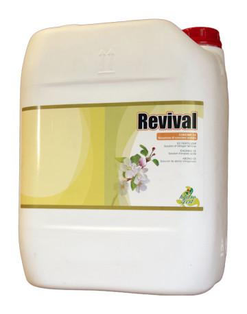 Revival1-360x458